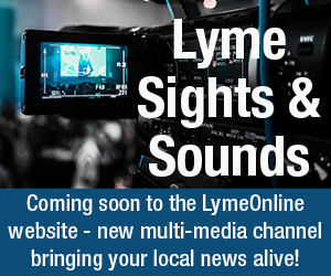 Lyme Sights & Sounds