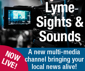 LymeOnline Sights & Sounds