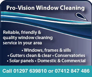 Pro-Vision Window Cleaning