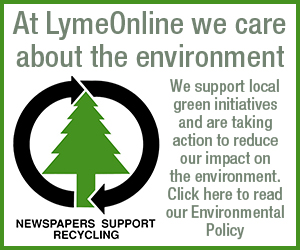 LymeOnline Environmental Policy