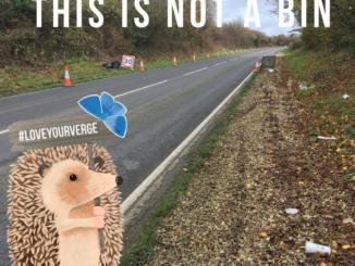 litter roadside verges