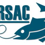 Lyme sea angling club