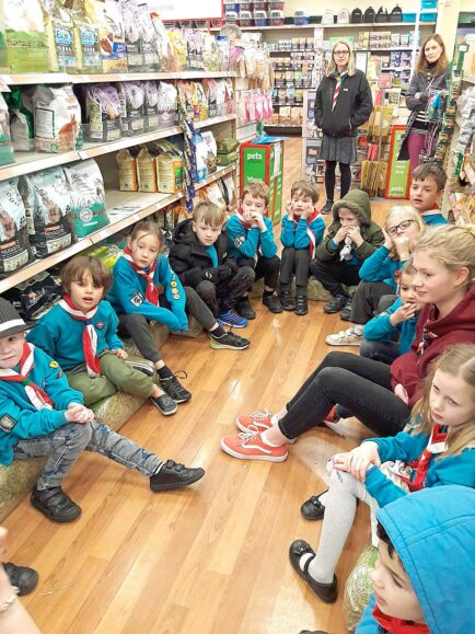 charmouth beavers