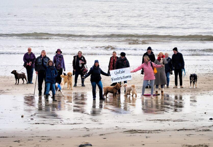 dogs-beach