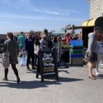 eat:Lyme Regis festival