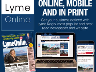 LymeOnline Sponsorship Packages