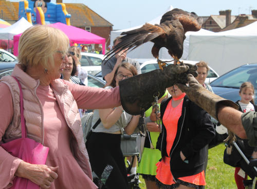 A falconry display entertained the crowds